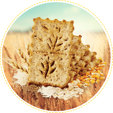 Galletas Saltín Noel Semillas y Cereales