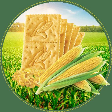 Galletas Saltin noel maiz 3 tacos