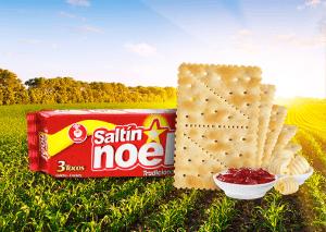 Saltin noel tradicional receta