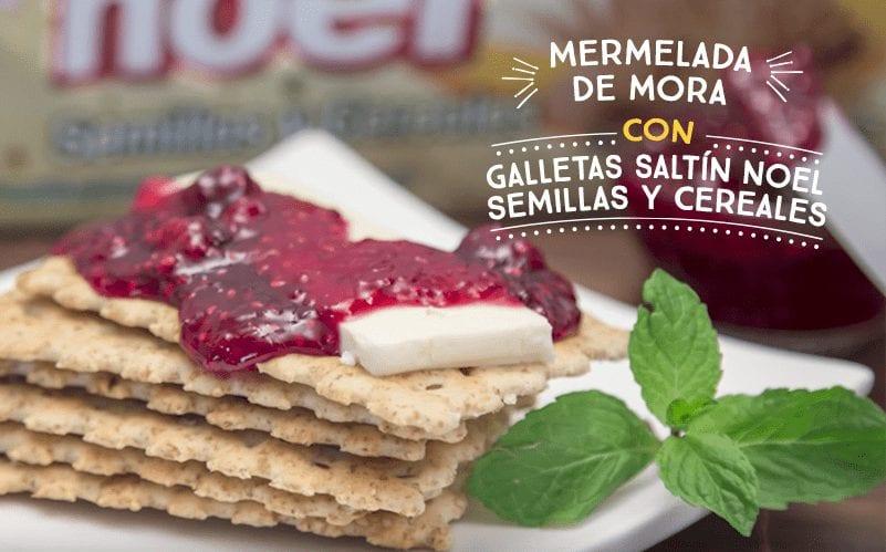 Mermelada de mora con Galletas Saltín Noel Semillas y Cereales