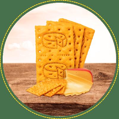 Galletas Saltin noel queso Holandes
